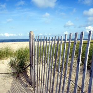 beachhouse300.jpg