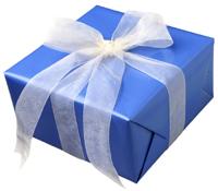 blueboxwhiteribbon1.jpg