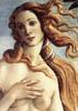 botticellibirthofvenus100.jpg