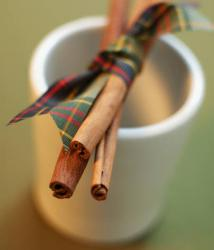 cinnamon-reed-diffuser-oil-lrg.jpg
