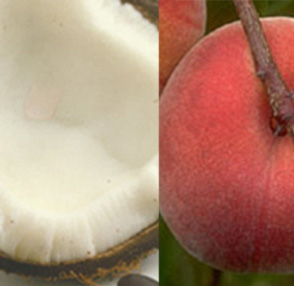 coconut-milk-and-peaches-reed-diffuser-oil