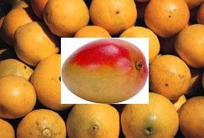 mangomandarin
