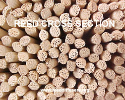 Reed cross-sections