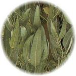 Stress Relief Eucalyptus Spearmint Reed Diffuser Oil