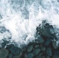 Seashore Reed Diffuser Oil
