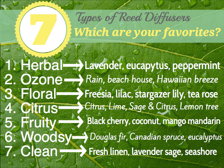 favorite reed diffusers